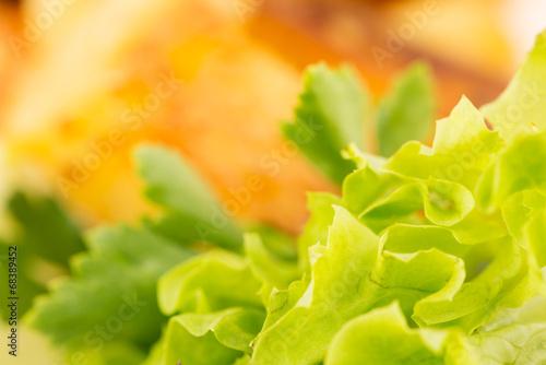 canvas print picture frischer Salat im Detail