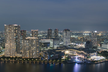 Tokyo Bay area from above at night