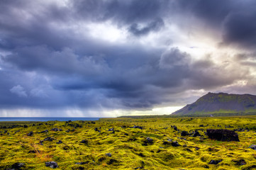 Old lava field