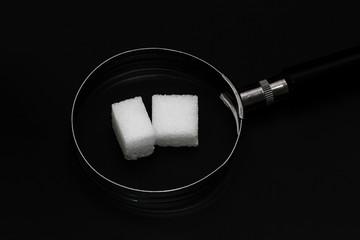 Zuckersucht