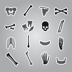 human bones stickers set eps10