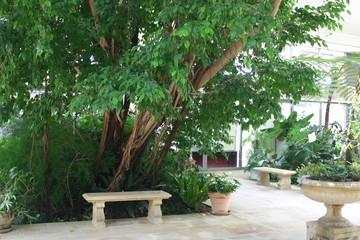 温室のなかの庭園