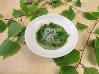 Seifen-Saponine in Birkenblättern