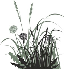 Grass, dandelions and spikelets