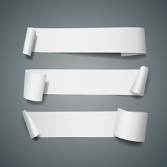 White paper roll long collections design