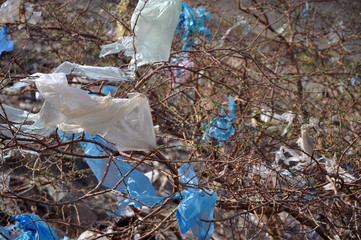 Garbage in nature