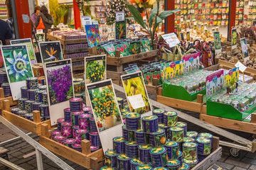Amsterdam, Netherlands. Sale of plants and seeds in the Flower m