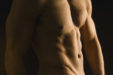 Mixed Race man's bare torso