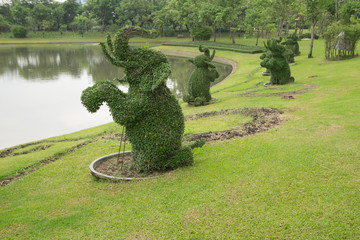 The Bending tree of elephant in garden