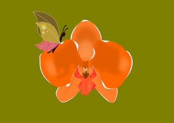 Orquídeas y mariposas