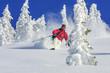 skifahren im Winterwunderland