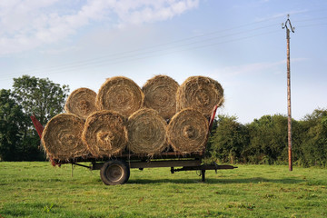 Bales of straw on a trailer standing in a green field