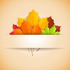 Autumn banner decorated with leaves.