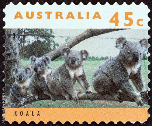 Tuinposter Koala Koala (Australia 1994)