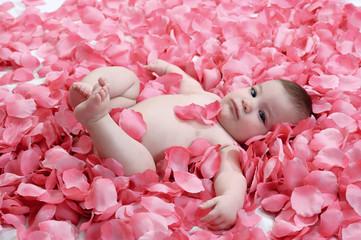 Bimba con petali di rosa
