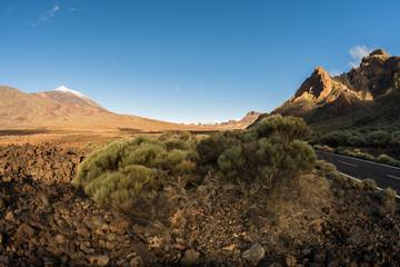 Straße durch den Teide Nationalpark auf Teneriffa