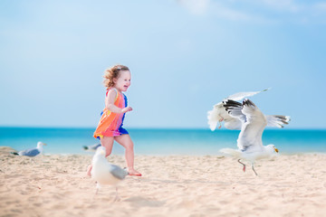 Little girl playing with seagulls