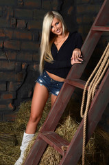 The beautiful woman in a shed at a ladder