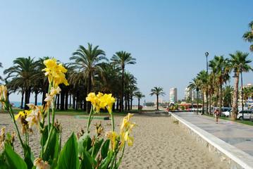 Playa y Paseo marítimo, Torremolinos