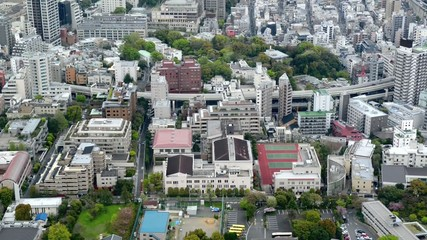 High angle view over city buildings in Central Tokyo