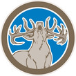 Stag Deer Roaring Circle Retro