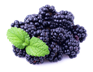 Ripe blackberry with mint.