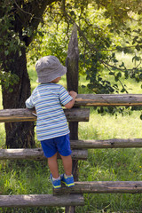 Child climbing the fence