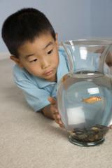 Asian boy looking at fish