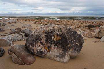 low tide at Sandy Bay in Abel Tasman National Park