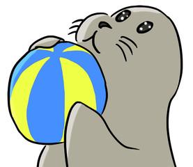 cartoon color animal expression seal play