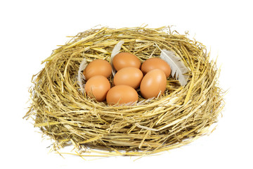 Nest with Brown Chicken Eggs and Pen Isolated on White