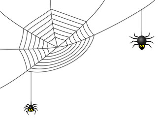 Spinnen mit Netz