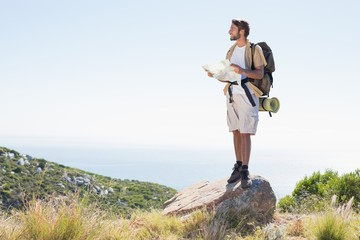 Handsome hiker holding map at mountain summit