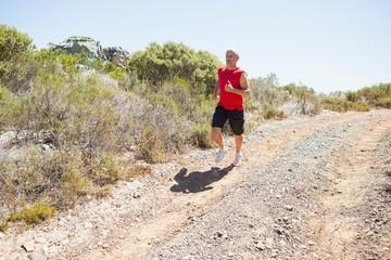 Fit man jogging down mountain trail