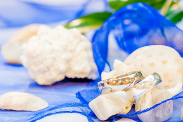 wedding rings with blue ribbon and shells