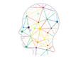 Polygonal network head presentation vector