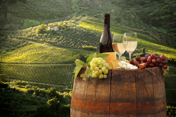 White wine with barell in vineyard, Chianti, Tuscany, Italy
