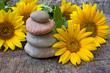 Steinturm auf Holz mit Sonnenblumen, Textfreiraum
