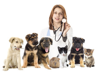 veterinarian and set of pets