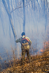 Suppression of forest fire 95