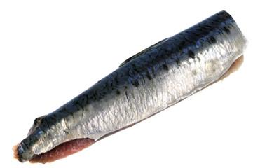 Filet de sardine