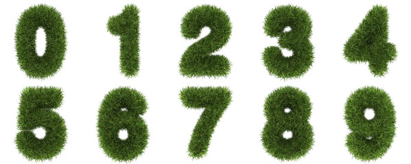 Numbers Made of Grass Turf Isolated on White Background