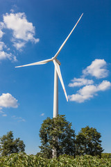 Wind Turbine for alternative energy