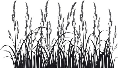 Herbs and spikelets