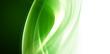 Zdjęcia na płótnie, fototapety, obrazy : Light Green Art Element For Your Design