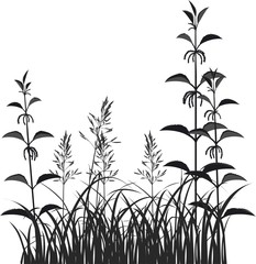 Nettle, grass and spikelets