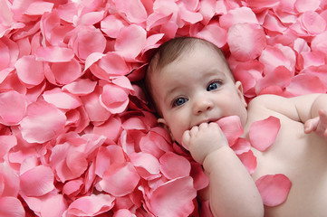 Bambina su petali rosa