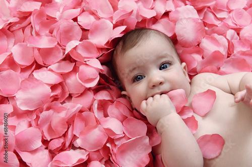canvas print picture Bambina su petali rosa
