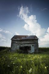Old Barn - 5