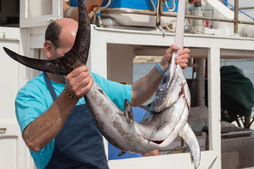 Man holding swordfish at sea port